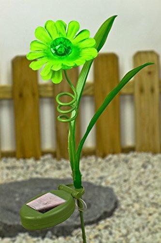 Lampe solaire lED de jardin à énergie solaire en forme de fleur vert