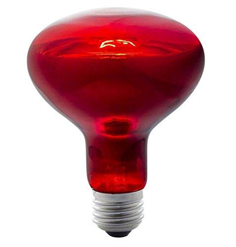 BIOFAMILY Infrarotlampe Backlampe 275w [Energieklasse A ++] , bulb