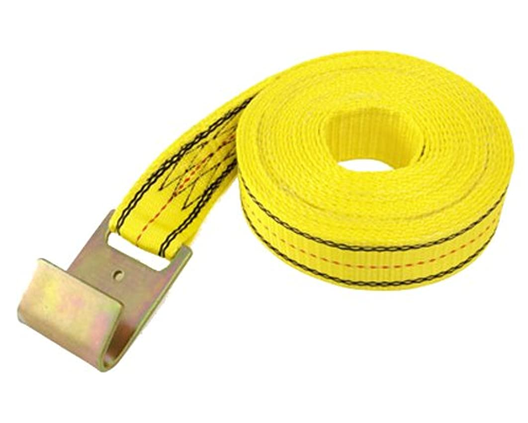 PROGRIP 05344 Heavy Duty Ratchet Tie Down Replacement Strap with Webbing: Flat Hook,  30' x 2