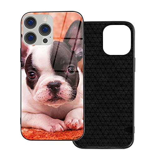 Funny French Bulldog Puppy Ip12-6.1 for iPhone 12 Glass Case Shockproof Design,TPU Bumper with Protective Hard Case Cover