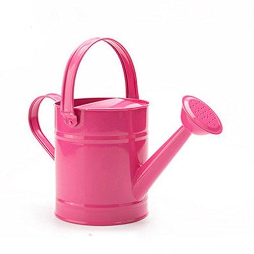 NACOLA Arrosoir en métal de 1,5 L pour enfants, pot d'arrosage pour jardin, fleurs, accessoires d'arrosage, couleur aléatoire