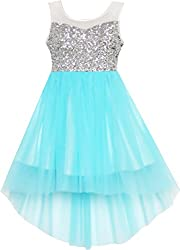 Blue With Sequin & Mesh Princess Tulle Dress