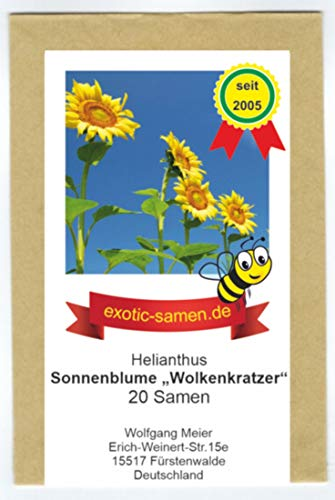 Riesen-Sonnenblume - Bienenweide - bis 4 Meter - Wolkenkratzer - Sky Scraper - 20 Samen