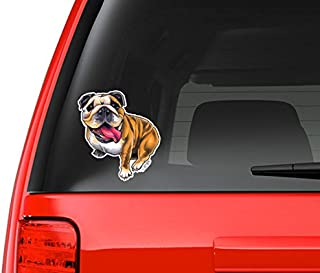 English Bulldog Full Color Art Vinyl Auto Decal Sticker or any Smooth Surface