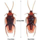 Immagine 1 simuer 100pcs finto scarafaggio haunted