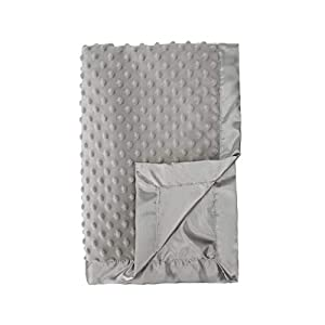 Pro Goleem Grey Baby Soft Minky Dot Blanket with Silky Satin Backing Gifts for Girls and Boys (Gray, 30'' x 40'')