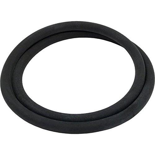 Pentair Mitra SS Filter Tank O-Ring O-292 313225