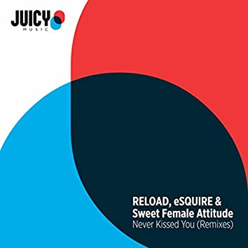 Never Kissed You (Remixes)