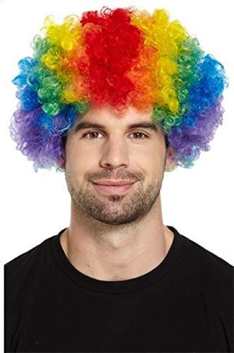 Pour Hommes Femmes Adulte Multicolore Rainbow Clown Perruque Afro Accessoire Déguisement