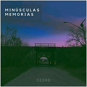 Minúsculas Memorias