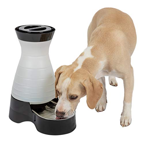 PetSafe Healthy Pet Water Station, Dog and Cat Water System with Stainless Steel Bowl, Medium, 128 oz.