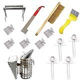Hiinice Apicultura Fuentes Herramientas Kit de Accesorios Conjunto de la Colmena de Starter Kit Apicultor con la Colmena Fumador Cepillo raspador 14PCS