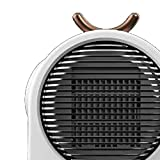 Rowe Mini PTC Ceramic Fan Heater Ceramic Space Heater With High Heating Efficiency & Low Noise Overheat And Tip-over Protection