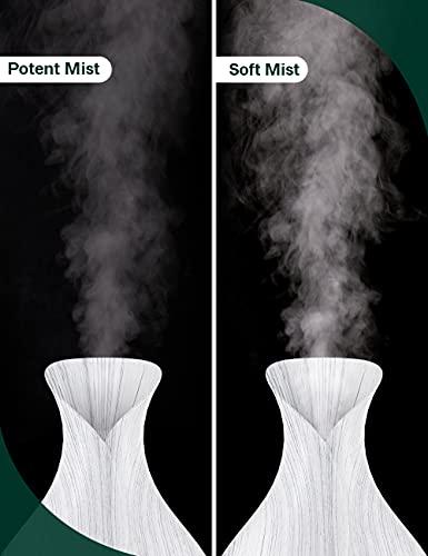 Maxcio Difusores de aceite perfumado
