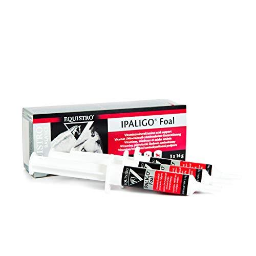 Equistro IPALIGO foal - Bote para orales (3 unidades, 14 g)