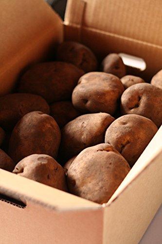 北海道産 白じゃがいも 10kg (寒じめワセシロ)今シーズン売切御免!毎年3月1日解禁予定! 越冬糖化熟成 低温処理 早生白/Hokkaido Hibernation-straged White Potato かんじめ わせしろ 早生白