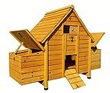 Cocoon Poulailler en bois avec 4 nichoirs et bac de nettoyage Pour 4 oiseaux standards ou 6 petits oiseaux