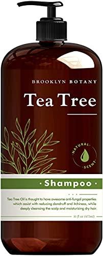 Brooklyn Botany Tea Tree Oil Shampoo – Anti Dandruff Shampoo for Dandruff Prone and Dry Flaky Scalp – Reduce Itchiness and Irritation – Deep Cleanser Tea Tree Shampoo – Stimulate Hair Growth – 16 oz