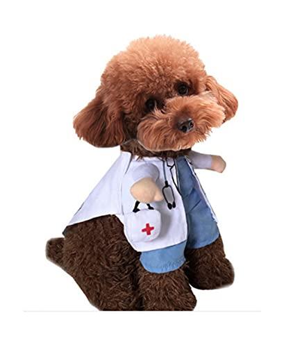 XEKE se Convierte en un Traje de Mascota erguido, un Disfraz de Halloween para Gatos y Perros, y un Traje de Gato o Perro para una Fiesta Divertida-D||S