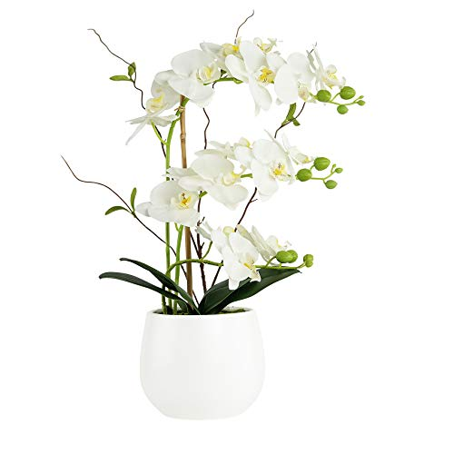 Artificial Orchid Flower Arrangements Artificial in Vase Phalaenopsis White...