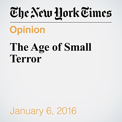 The Age of Small Terror cover art