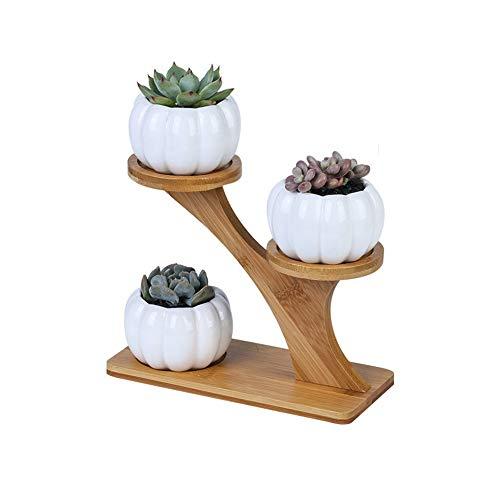 FYHX Simple Blanc Creative Succulent Hibou en céramique avec arboricole Cadre Bambou Combinaison Flowerpot Home Office Potted Décor,B