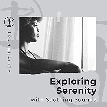 Exploring Serenity with Soothing Sounds