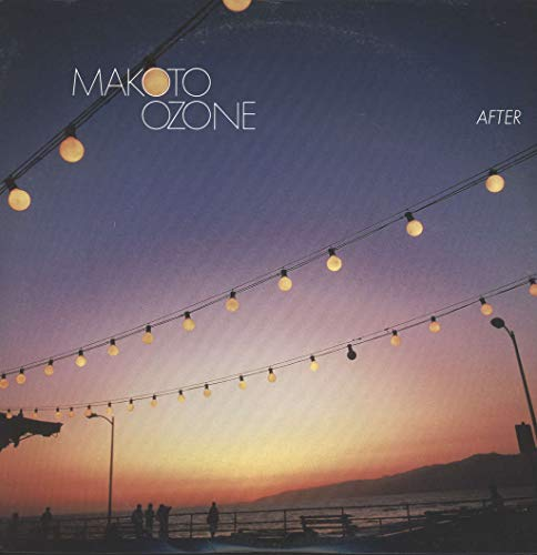 After [Vinyl LP]