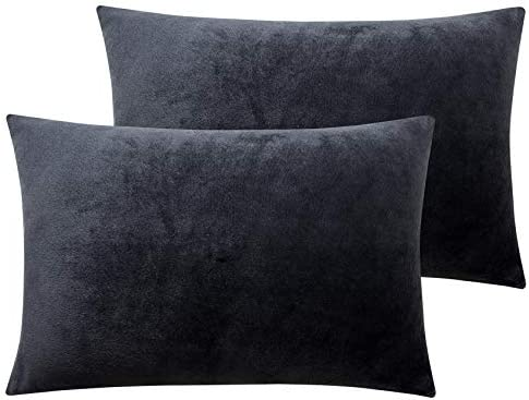NTBAY Solid Velvet Toddler Pillowcases 2 Packs Super Soft and Cozy Luxury Zippered Travel Pillow product image