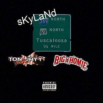 Skyland (feat. Bigxhom1e DubzZz)