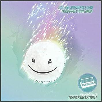 Transperception I