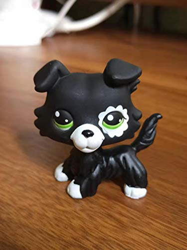 wdd OOAK LPS Flower Graffiti Collie Cat Hand Painted Littlest PET Shop