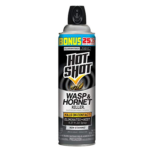 top rated Hot Shot 13416 Bee and Hornet Killer, 17.5 oz – 1 pc 2020