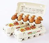 太陽卵 九州産 太陽卵 10個入り 3パック チルド便