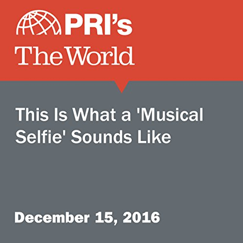 This Is What a 'Musical Selfie' Sounds Like audiobook cover art