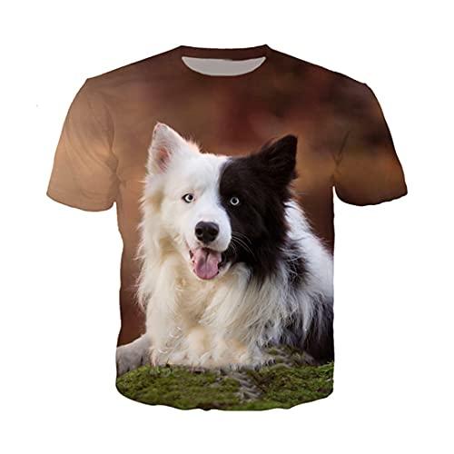 Border Collie Dog T Shirt Casual Men Women Animal Sweatshirt 3D Print Short Sleeve Hip Hop O Neck Pullover 6 Asia XL
