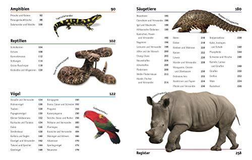 Tiere: Die Vielfalt der Tierwelt in 1.500 Bildern - 9