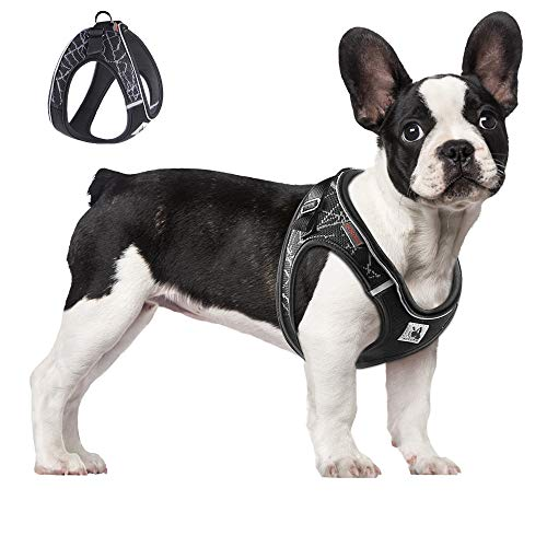 ACKERPET Comfort Step in Dog Harness Easy to Put on Small Dog Harness Choke Free Adjustable Pet Vest No Pull Outdoor Sport Vest Harness Reflective Soft Padded Vest for Small Medium Dogs(S, Grey)