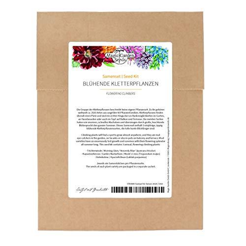 Plantas trepadoras florales, juego de semillas con 3 variedades exuberantes, coloridas, un año.