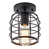GPZ-iluminación de techo Luz de techo, luz de techo empotrada retro, lámpara de jaula de metal, accesorio de iluminación, escalera, cocina, garaje, luz de techo de jaula de hierro de una sola cabeza E