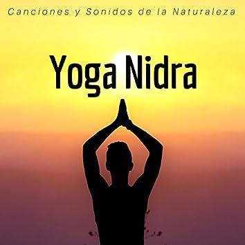 Yoga Nidra - Canciones y Sonidos de la Naturaleza para Dormir y Soñar
