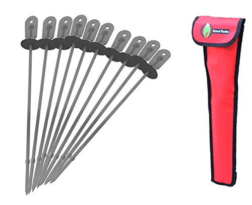 Cave Tools Barbecue Skewers Set (10) - Stainless Steel Wide BBQ Kabob Sticks - 12 Inch Flat Metal Shish Kabab with Food Remover Disc for Grilling