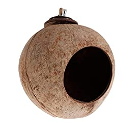 Celan Parrot Nest Natural Coconut Shell House Cage Feeder Parakeet Birds Squirrel Hamster Toys Pet Breed Decoration Supplies Pendant