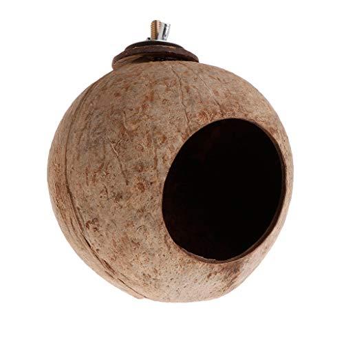 Mentin Nid d'oiseau en Noix de Coco Naturelle Jouet de Mangeoire de Cage de Hutte de Maison pour l'animal familier pour Perruche, Hamster