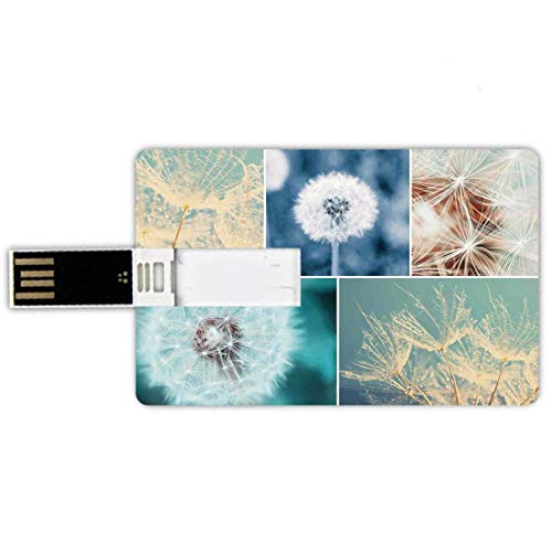 8GB Chiavette USB a forma di carta di credito Dente di leone Memory Card stile carta di credito Il dente di leone di fioritura fiorisce il collage organico naturale di colore di fragranza morbida lanu