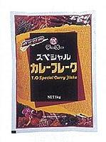 テーオー食品 スペシャルカレーフレーク 1kg×10
