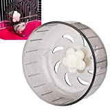 HEEPDD Silent Spinners, 13cm/5.1 Inch Hamster Running Wheel Washable Exercise Wheel for Hamster Rat Gerbils Guinea Pigs