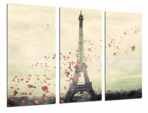 Cuadros Cámara Poster Fotográfico Paisaje Ciudad Paris, Romantico Petalos Rosa, Eiffeil, Multicolor, 97 x 62 cm XXL