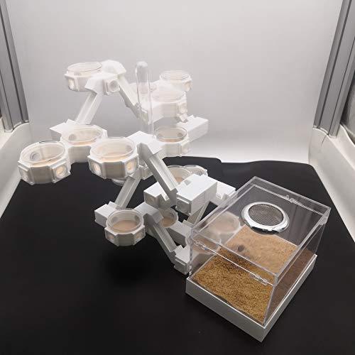 SZANDY Hormiguero Diseño Biónico Impresión 3D Hormiguero Sentido de La Tecnología Juguetes Educativos de Ciencia Granja De Hormigas