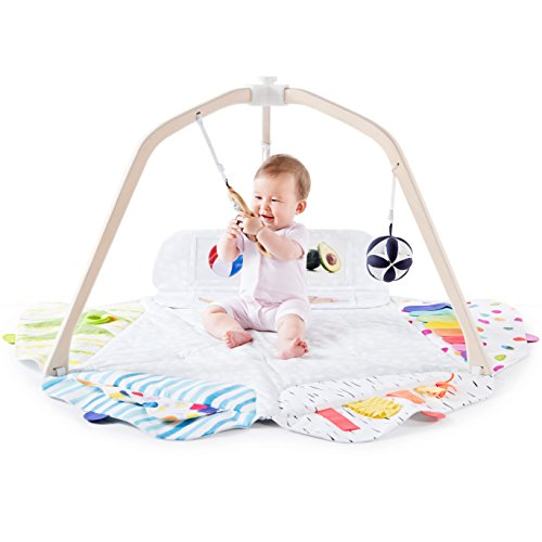 Lovevery The Play Gym Stage-Based Developmental Activity Gym & Play Mat for Baby to Toddler